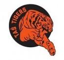 Tasmajdan tigrovi